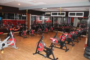 Cybex Excellence Gym