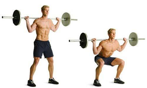 barbell_squat