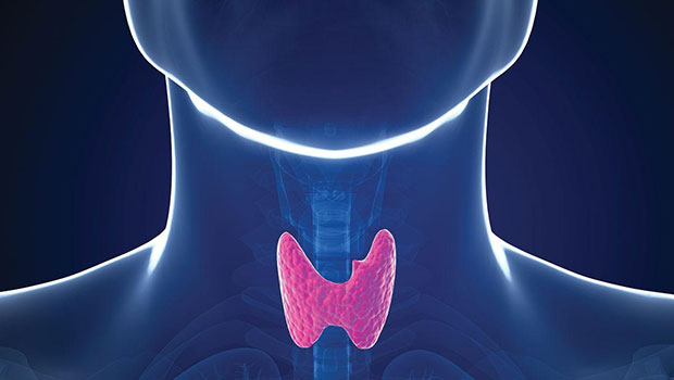 Ο ρόλος της διατροφής στην καλή λειτουργία του θυρεοειδή αδένα