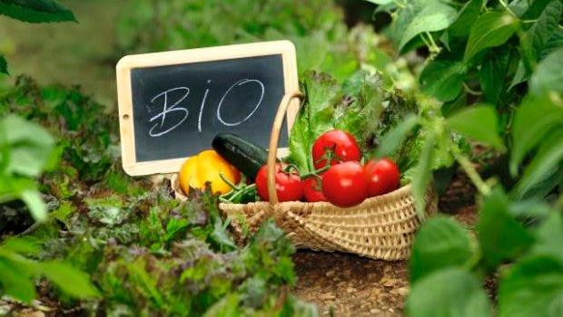 Τι είναι τα βιολογικά τρόφιμα