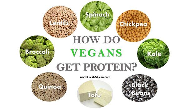 Φυτικές πρωτεΐνες για χορτοφάγους και όχι μόνο