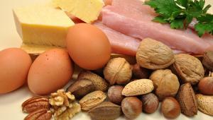 Διαφορετικές πηγές πρωτεΐνης και μυϊκή ανάπτυξη